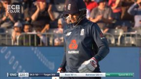 Classy Four from Root