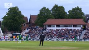 Root Caught by Hafeez