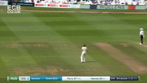 Ellyse Perry pulls to the boundary to bring up her 50.