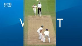 Perry Wicket & Replay.
