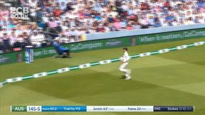 Steven Smith drives to the boundary