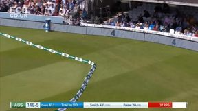 Smith goes on the attack to bring up his 50