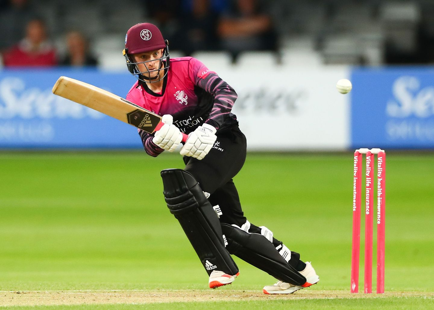Lewis Goldsworthy in Vitality Blast action for Somerset